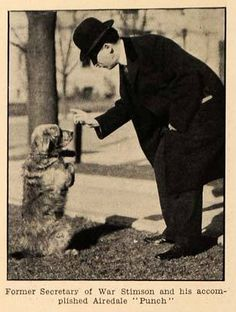 """Former Secretary of War Stimson and his accomplished Airedale """"Punch"""" c. 1913  Henry Lewis Stimson (September 21, 1867 – October 20, 1950) was an American statesman, lawyer and Republican Party politician and spokesman on foreign policy. He served as Secretary of War (1911–1913) under Republican William Howard Taft, and as Governor-General of the Philippines (1927–1929). As Secretary of State (1929–1933) under Republican President Herbert Hoover."""