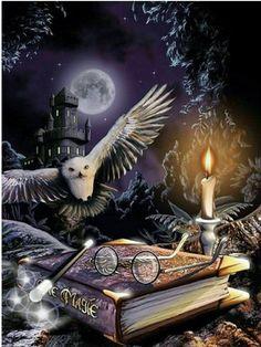 Harry Potter Poster, Harry Potter World, Harry Potter Magie, Harry Potter Artwork, Animal Kingdom, Halloween Imagem, Halloween Halloween, Halloween Movies, Halloween Pictures