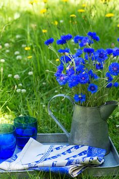 - Best ideas for decoration and makeup - Blue Flowers, Wild Flowers, Beautiful Flowers, Blue Garden, Colorful Garden, Tree Felling, Flower Images, Flower Power, Floral Arrangements