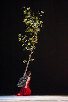 "Pina Bausch, ""...como el musguito en la piedra, ay si, si, si ..."" (Like moss on a stone), Premiere 12 June 2009, Operahouse Wuppertal"