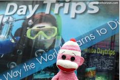 Lil' Squirt is thinking about exploring the deep blue sea (Phuket, Thailand)