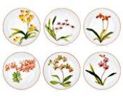 Hermès Jardin des Orchidées Set of 6 dessert plates n°s 8 to Porcelain Ceramics, Ceramic Pottery, Painted Porcelain, Hermes Home, China Painting, Beach Blanket, Earthenware, Favorite Holiday, Gardens