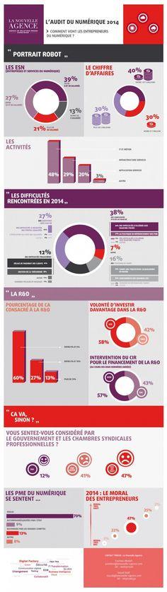 #Infographie : Les entreprises et services du numérique ont vécu une année 2014 mitigée