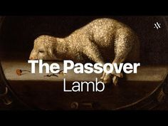 """The Passover LambThe Passover Lamb views 337 7 SHARE Behold Israel/ Amir Tsarfati Published on Dec 2015 The apostle Paul wrote to the Corinthians """"For even Christ, our Passover, is sacrificed for us."""" What made Him the Passover lamb and why? 2 Chronicles 7 14, Praying For Others, Gods Love, My Love, Salt And Light, Kingdom Of Heaven, New International Version, Praise God"""
