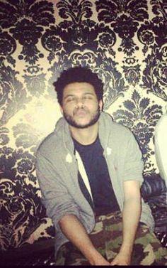 the Weeknd. xo.