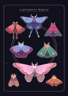 Moth-Print-Tictail.png (700×990)