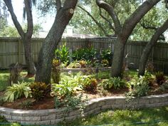 I really like raised beds like this around trees.
