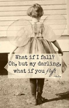 Fly darling fly