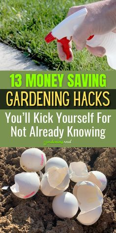 A few of these projects are a little more time intensive, or may cost money to start with, but will save you a lot of time and money in the long run. #gardeninghacks #gardenhacks Garden Soil, Vegetable Garden, Diy Garden Projects, Garden Ideas, Epsom Salt Fertilizer, Organic Vitamins, Genesis 1, Plant Markers, Diy Greenhouse
