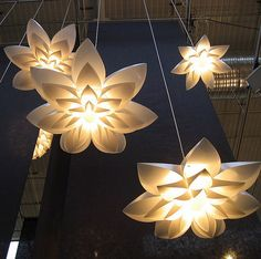 Image result for flower light