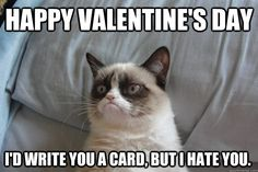 Roses are red, Violets are blue, we hate V-Day, how about you? Get anti-romantic with these 11 grumpy cat Valentine's Day memes! Grumpy Cat Quotes, Grumpy Cat Humor, Cat Memes, Funny Memes, Grumpy Kitty, Jokes, Grumpy Cat Valentines, Hate Valentines Day, Valentine Cards