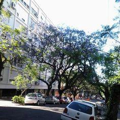 Bonfim - Porto Alegre - Nov 13