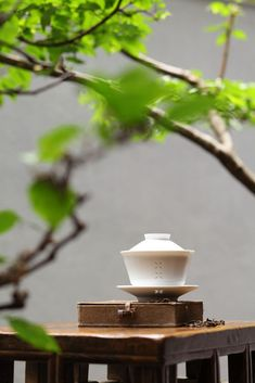 Beautiful Chinese gong-fu surrounded by nature