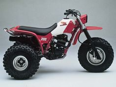 Honda 200ex 3-wheeler. Just like what I learned to ride on