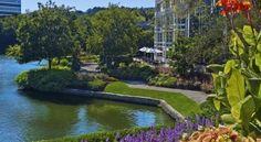 The Westin Atlanta Perimeter North - 3 Star #Hotel - $89 - #Hotels #UnitedStatesofAmerica #Atlanta http://www.justigo.in/hotels/united-states-of-america/atlanta/the-westin-atlanta-perimeter-north_106008.html