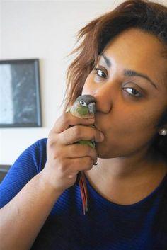 Bradley a very friendly green cheek conure, Pamela's bird friend.  Read about their interesting story.  #GreekCheekConure #nyclovespets