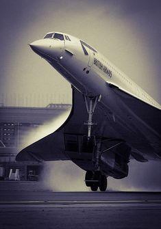 """gentlemansessentials: """"Concorde Gentleman's Essentials """""""