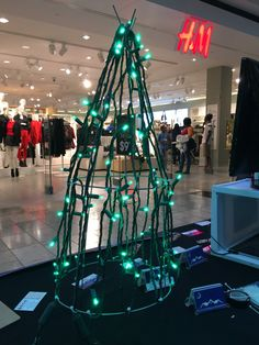 At the Avenues Mall demonstrating how to make mini trees for your outdoor display.