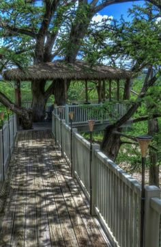 Head up into the tree tops with this unique waterfront tree house in Rio Frio, Texas