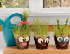 earth day or plant unit idea