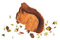 Woodland Creatures 2013 Calendar by Carol Farrell, via Behance