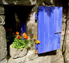 wah! color love #windowbox