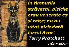 Citate si proverbe despre pisici Experiment, Terry Pratchett, Movie Posters, Film Poster, Billboard, Film Posters