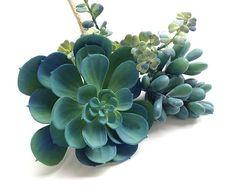 Faux succulents, collection, succulent plants, 3 faux succulents, blue succulents, echeveria, sedum, sedeveria, coastal decor, succulent gif