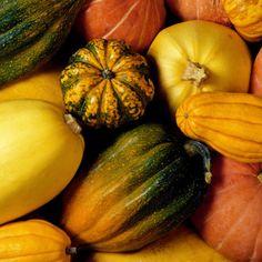 Menu de Noël traditionnel : quel légumes anciens choisir en accompagnement ?