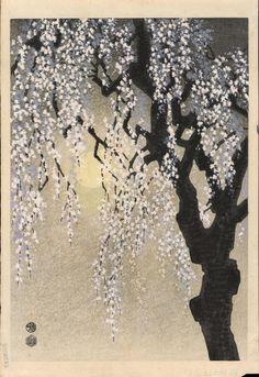 Cherry blossoms, woodblock print. #TERRAINsignsofspring