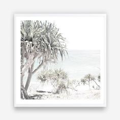 Shop Coastal & Tropical wall art prints by The Print Emporium. View our range of beach themed canvas prints, and framed or unframed art prints, available in a wide range of colours and patterns. Designed and made in Australia Square Art, Square Canvas, Mdf Frame, Canvas Frame, Photo Canvas, Canvas Artwork, Framed Art Prints, Canvas Prints, Timber Mouldings