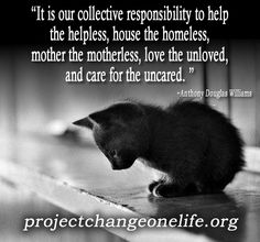 """It is our collective responsibility to help the helpless, house the homeless, mother the motherless, love the unloved, and care for the uncared. This applies to other humans and other animals."" ~Anthony Douglas Williams - Inside The Divine Pattern"