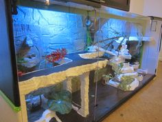 Reptile Terrarium Entertainment Center with LED lights (sold in custom colors, dimensions, and habitat themes).