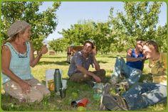 Discovery Organics: 2012 Best Fair Trade Programs Finalist