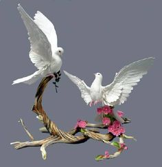 Porcelain Or China Porcelain Jewelry, Porcelain Vase, Fine Porcelain, Nicolas Vanier, Clay Birds, Paper Birds, White Doves, Ceramic Flowers, Clay Art