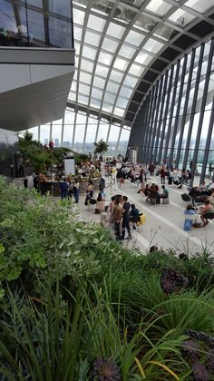 Fresh back from a great weekend in London here are my tips for booking a visitor slot at the Sky Garden and having a good time when you get there.  The arrival experience at the Sky Garden complete…