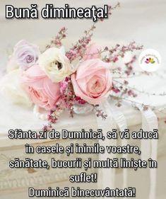 Good Morning, Happy Day, Buen Dia, Bonjour, Bom Dia