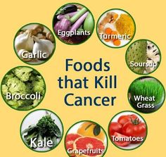 The rise in cancer in the West has paralleled the rise in factory farming and the use of processed foods containing vegetable oils and additives. Orthodox methods for treating cancer (radiation and chemotherapy) do not prolong life. The best approach to cancer is prevention. Traditional diets, containing animal and plant foods farmed by nontoxic methods, are rich in factors that protect against cancer. Many of these protective factors are in the animal fats. Vegetarianism does not protect…