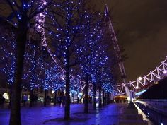 Anaya is preparing for a beautiful London Winter! #christmas #lights #london eye