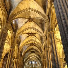 Barcelona cathedral Gothic Cathedral, Barcelona Cathedral, City, Photography, Photograph, Fotografie, Cities, Photoshoot, Fotografia