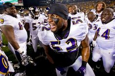 Buy exclusive university and college sports, campus, traditions and stadium photos. Ray Ray, Ray Lewis, Team Player, Baltimore Ravens, National Football League, American Football, Nfl, Bird, Game
