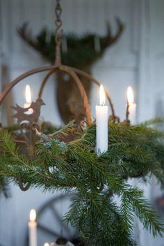 Kerst   Zelfgemaakte kroonluchter van dennetakken Door Vonneke