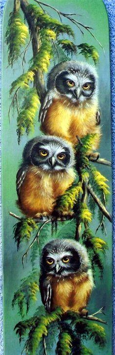 'Sawwhet Owls' by Karen Hubbard