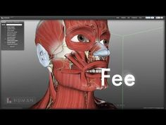 7 Resources for Teaching and Learning Anatomy and Physiology