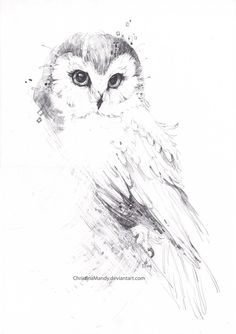 Owl... by ChristinaMandy.deviantart.com on @DeviantArt