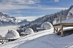 Professional: Whitepod Hotel Switzerland is a Hotel who's mission is to provide an amazing experience in nature while causing as little impact as possible.