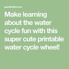 Make learning about the water cycle fun with this super cute printable water cycle wheel!