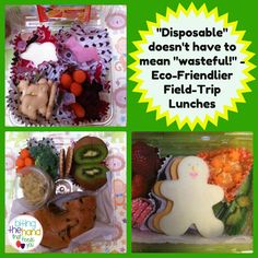 Eco-Friendly #Disposable School Field Trip Bento #Lunches