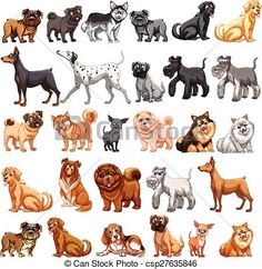 EPS Vector of Dog collection - Different type of dogs small and ...