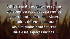 CULTIVE A GRATIDÃO |